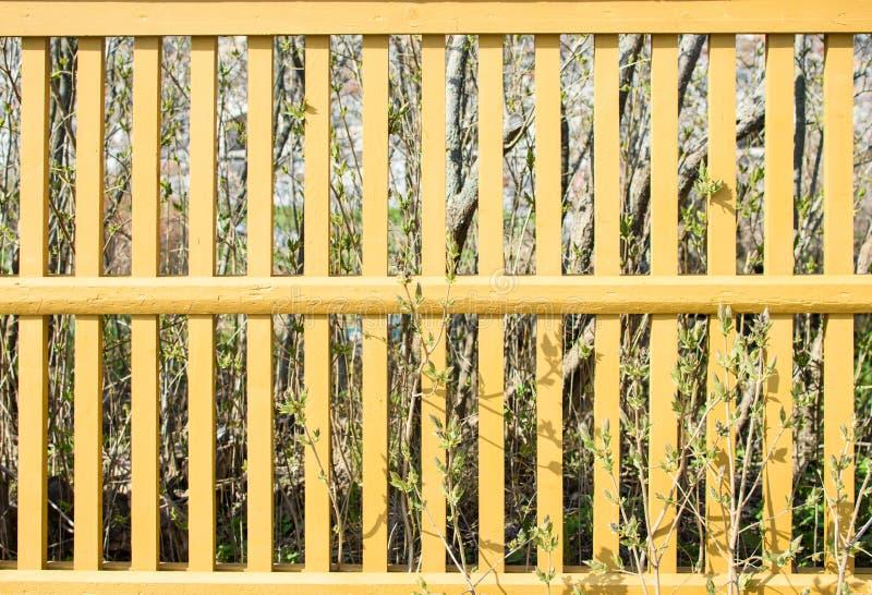 黄色尖桩篱栅 免版税库存照片