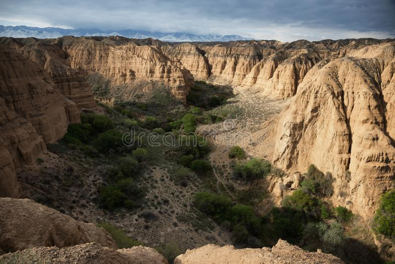 黄色峡谷 库存照片
