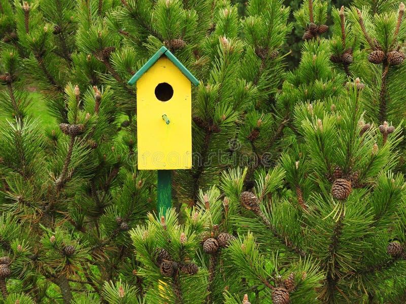 黄色嵌套-箱子在庭院,立陶宛里 库存照片