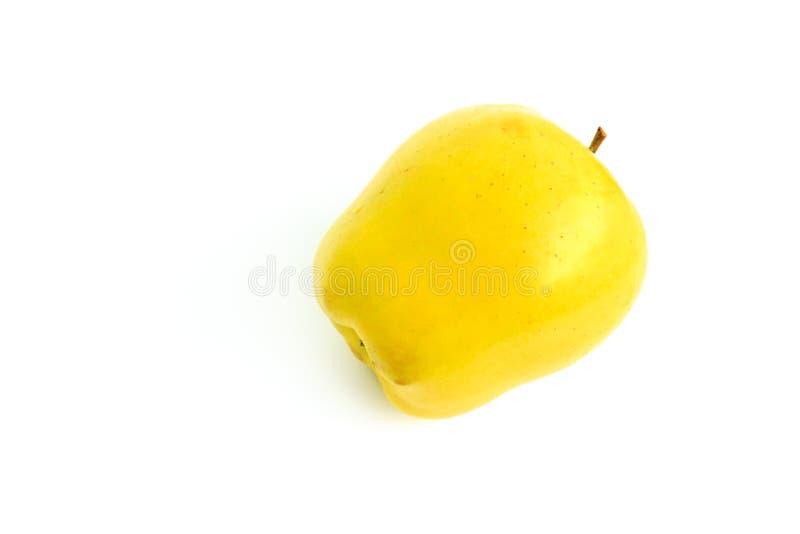 黄色成熟苹果 免版税库存照片