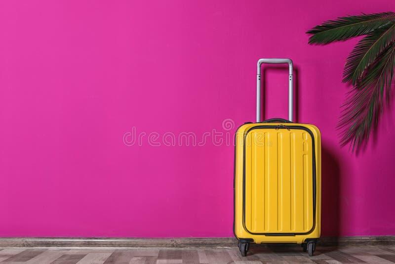 黄色手提箱和棕榈分支临近颜色墙壁户内 免版税图库摄影