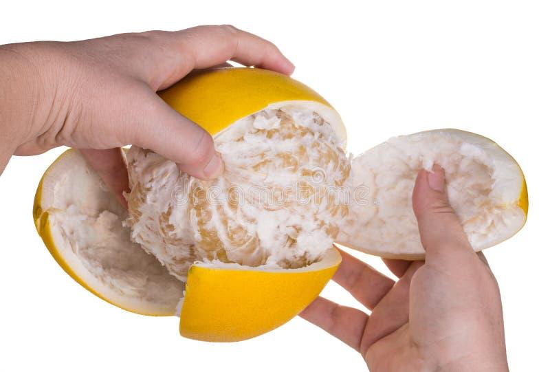 黄色柚皮肤削皮  柑橘grandis 背景查出的白色 免版税图库摄影