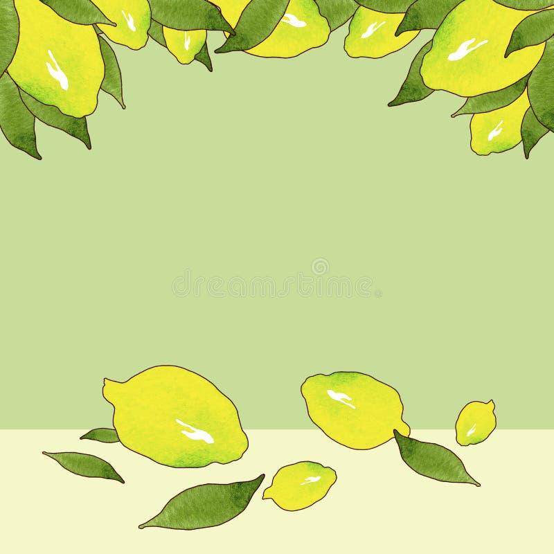 黄色柠檬果子框架与在美好的样式的绿色背景隔绝的绿色叶子的 Ctrus果子框架模板 免版税库存照片