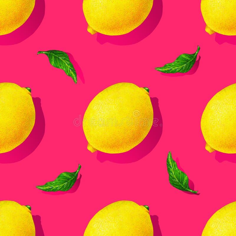 黄色柠檬结果实与在桃红色背景隔绝的绿色叶子 得出设计的水彩无缝的样式 库存例证