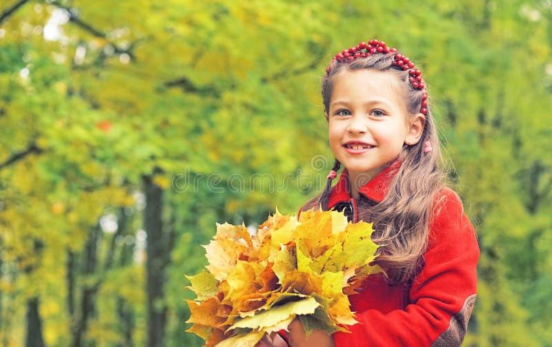 黄色槭树花束在小女孩的手离开红色外套的 晴朗秋天的日 秋天明亮的颜色 免版税库存照片