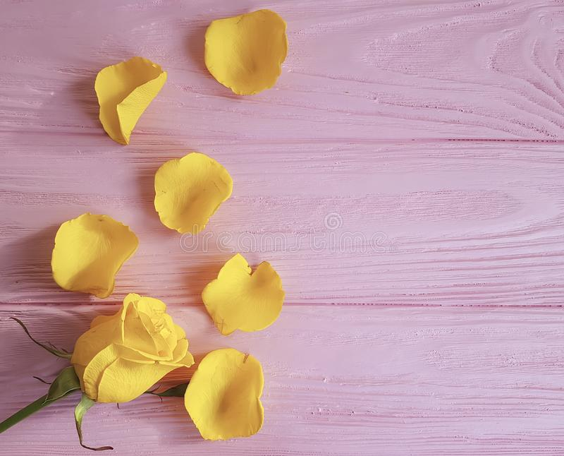 黄色生气勃勃问候在桃红色木背景,框架上升了 免版税图库摄影