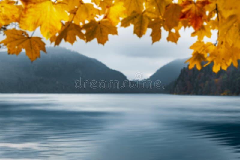 黄色留下框架和湖水 在焦点秋天图象外面 免版税图库摄影