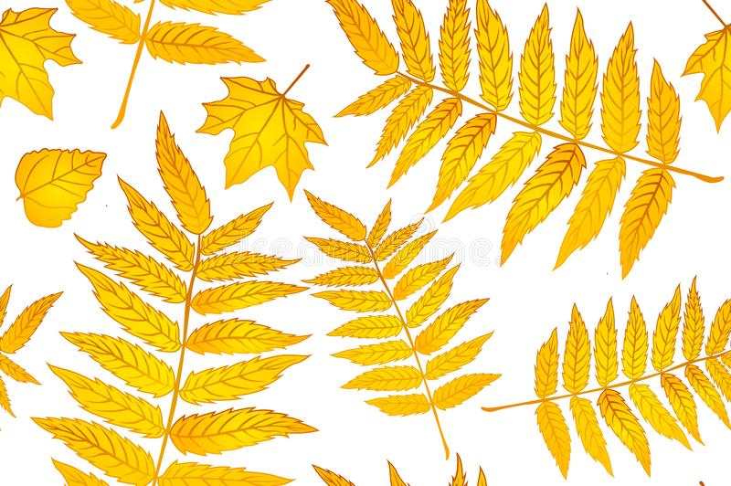 黄色红色和橙色的秋叶 背景秋天无缝样式的板料 织品的样式 蕨印刷品 趋向秋天 库存例证
