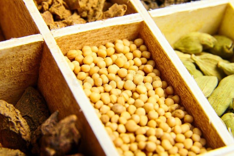 黄色芥菜籽 各种各样的干香料 库存图片