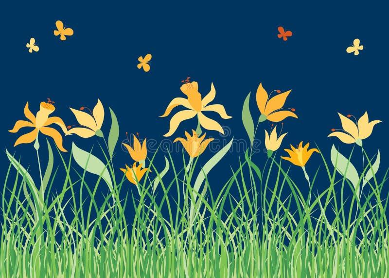 黄色花在夏天草甸 向量例证