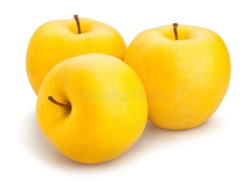 黄色苹果 免版税库存图片