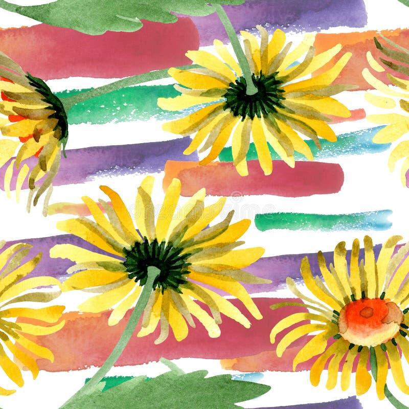 黄色雏菊花卉植物的花 水彩背景例证集合 无缝的背景模式 免版税库存图片