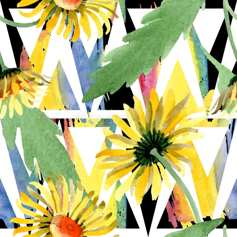 黄色雏菊花卉植物的花 水彩背景例证集合 无缝的背景模式 库存图片