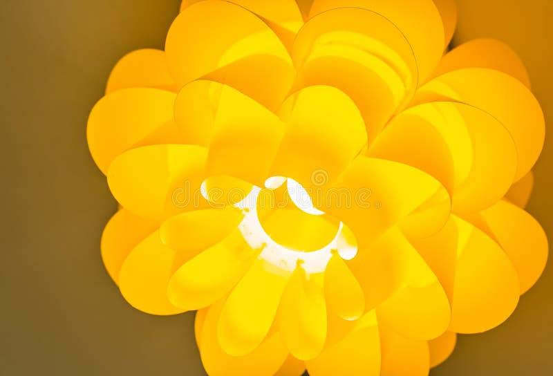 黄色颜色花类型屋顶光从底部的特写镜头视图 免版税库存图片