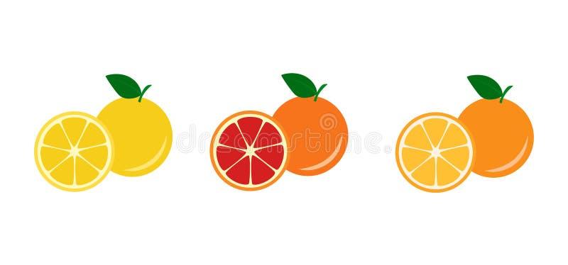 黄色,红色葡萄柚和桔子 库存例证