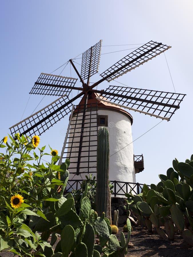 黄雀色全部老西班牙风车 免版税库存照片