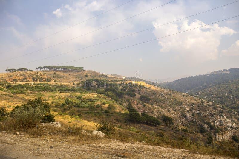 黎巴嫩的风景有山和雪松的在Bcharre,黎巴嫩附近 库存图片