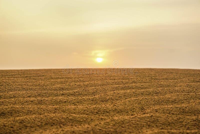 黎明在拉贾斯坦的沙漠 印度 免版税库存图片