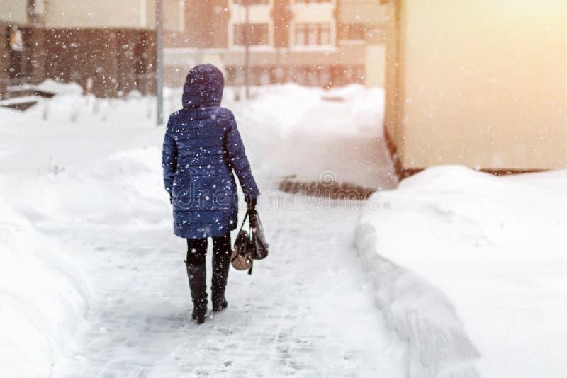 黎明夹克的妇女走通过城市街道的在大雪和飞雪期间在冬天 恶劣天气展望 免版税库存照片