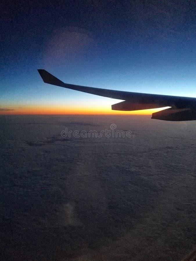 黎明的飞行 免版税库存图片