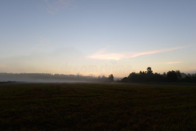 黎明阳光在天空蔚蓝的在一个领域上在早晨薄雾清早 库存照片