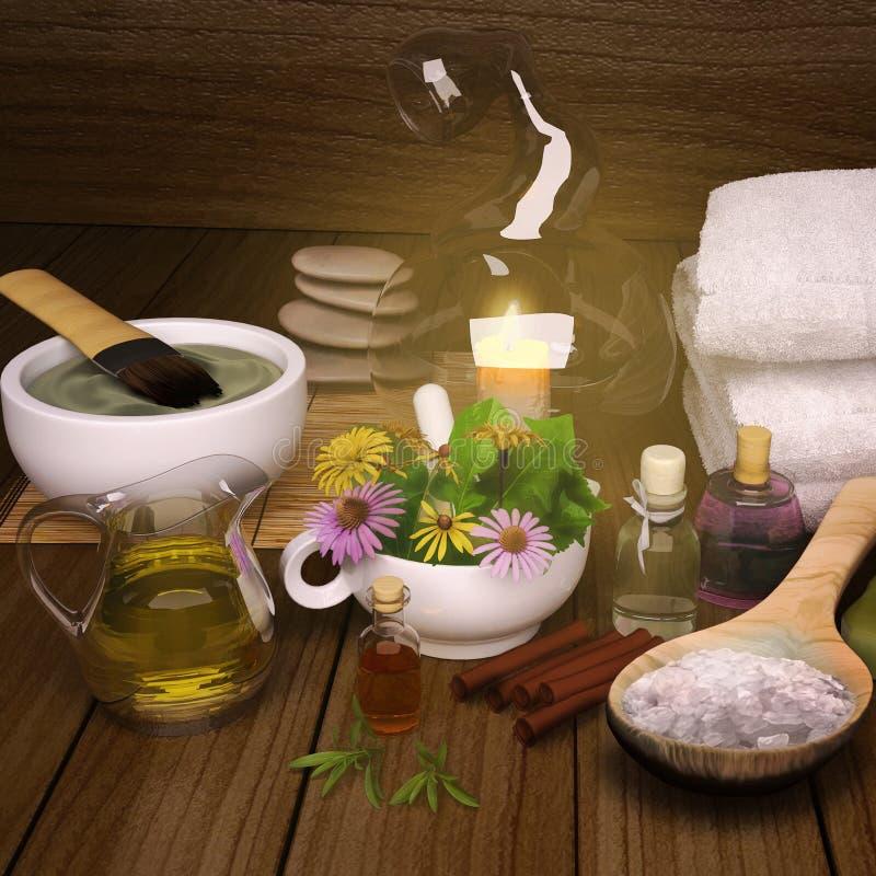 黏土温泉,面具,腌制槽用食盐,健康身体的肉桂条 皇族释放例证