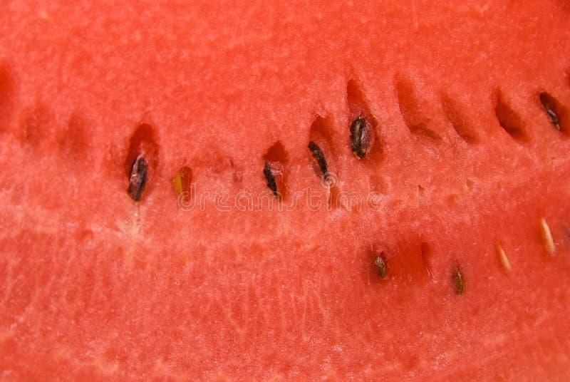 黏浆状物质西瓜 库存照片