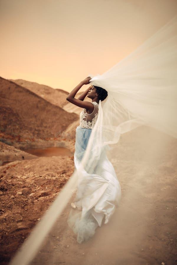 黑人新娘在她的手上站立并且举行挥动的新娘面纱在美好的风景背景  库存图片