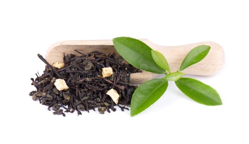 黑和绿色锡兰茶用苹果和香柠檬,隔绝在白色背景 图库摄影