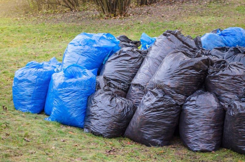 黑塑料垃圾袋在公园,春季大扫除 叶子和垃圾在袋子 库存图片