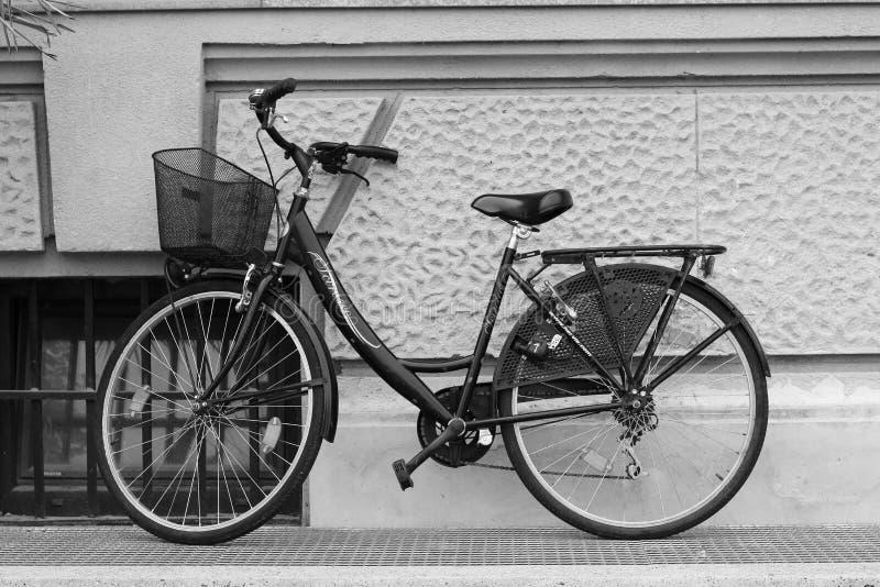 黑女性自行车 库存照片