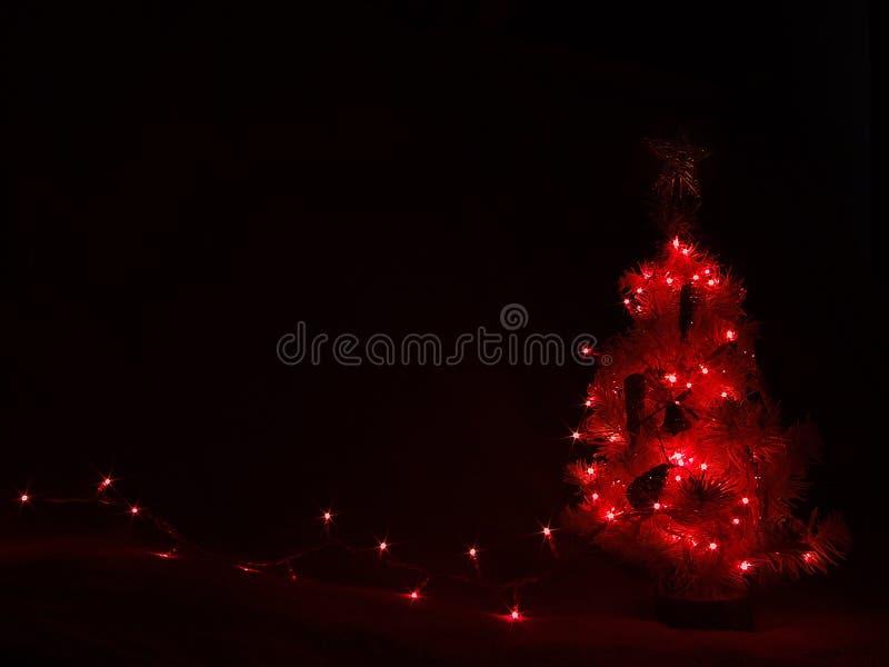 黑暗点燃红色结构树 免版税库存图片