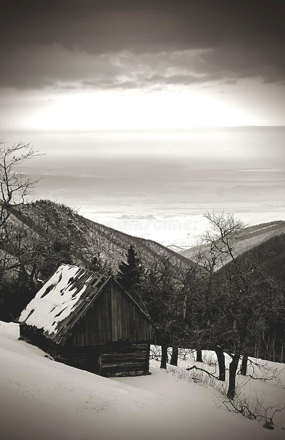 黑暗的冬天 免版税库存图片