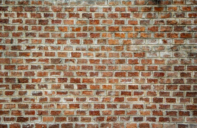 黑暗的变色的老砖墙背景  库存图片