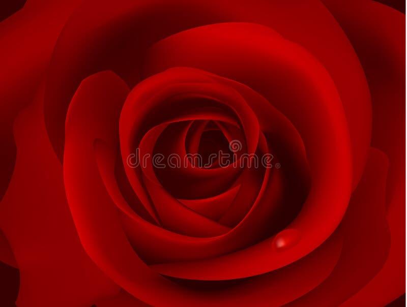 黑暗的小滴图象宏观红色奉承话 向量例证