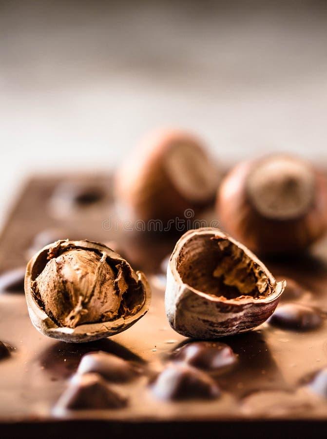 黑暗的巧克力用在shel的榛子在灰色backgroundl,特写镜头 免版税库存照片