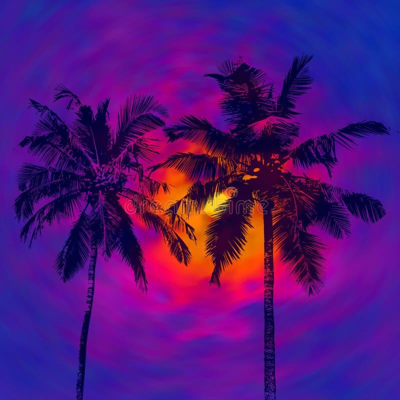 黑暗的棕榈剪影 皇族释放例证