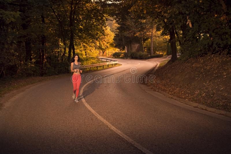 黑暗的森林,日落日出,木树,跑的跑步在asph 免版税图库摄影