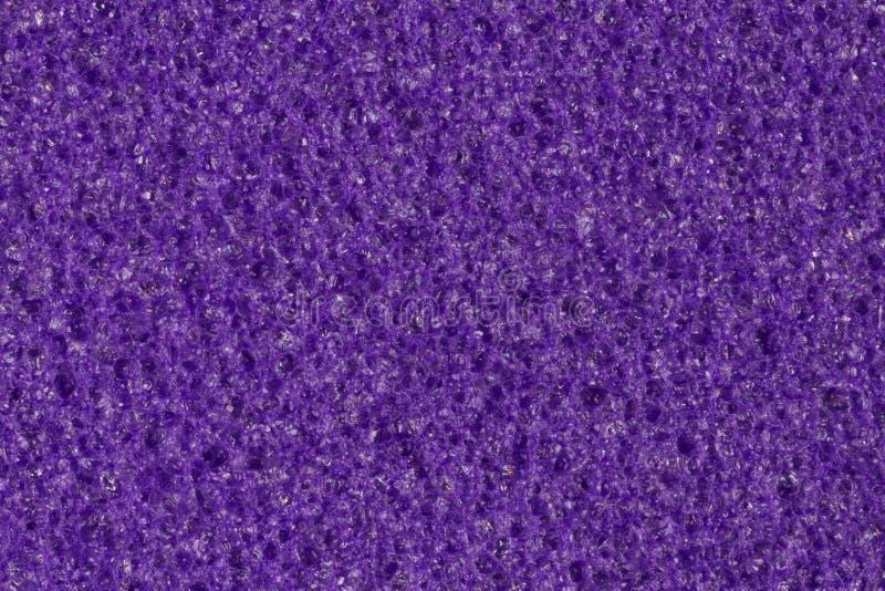 黑暗的紫罗兰色泡沫,与对比多孔表面的伊娃纹理 库存图片