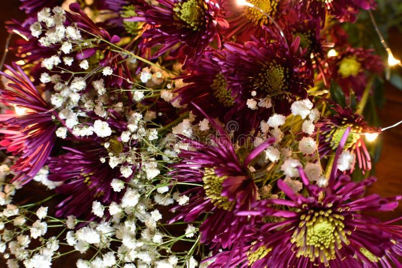 黑暗的紫色新英格兰翠菊花束 库存照片
