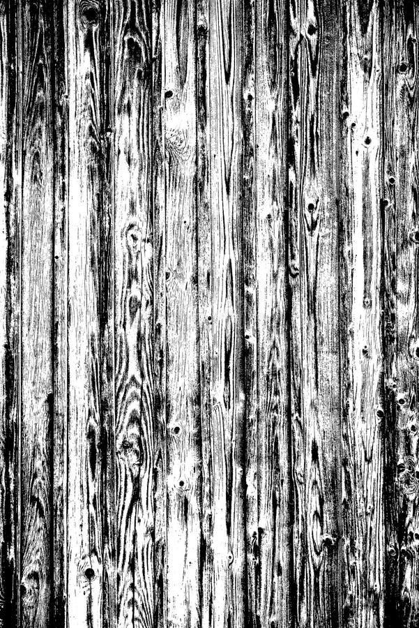 黑暗的覆盖物的难看的东西黑白色木纹理在背景 与没什么的自然木背景,大模型为创造摘要 库存例证