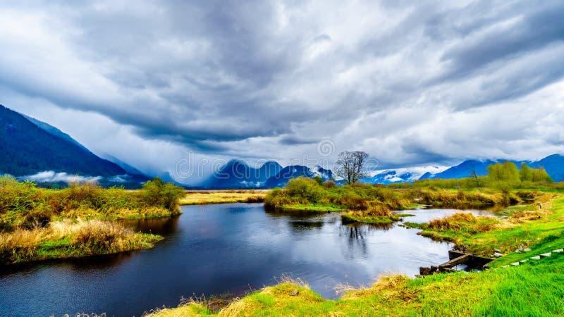 黑暗的雨云在皮特河和皮特Addington沼泽盐水湖的一个冷的春日在枫树岭的皮特开拓地 图库摄影