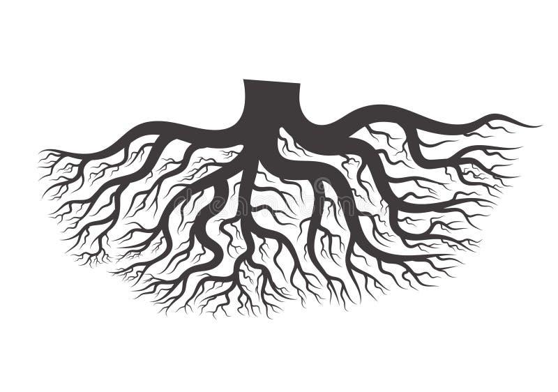 黑树根 库存例证