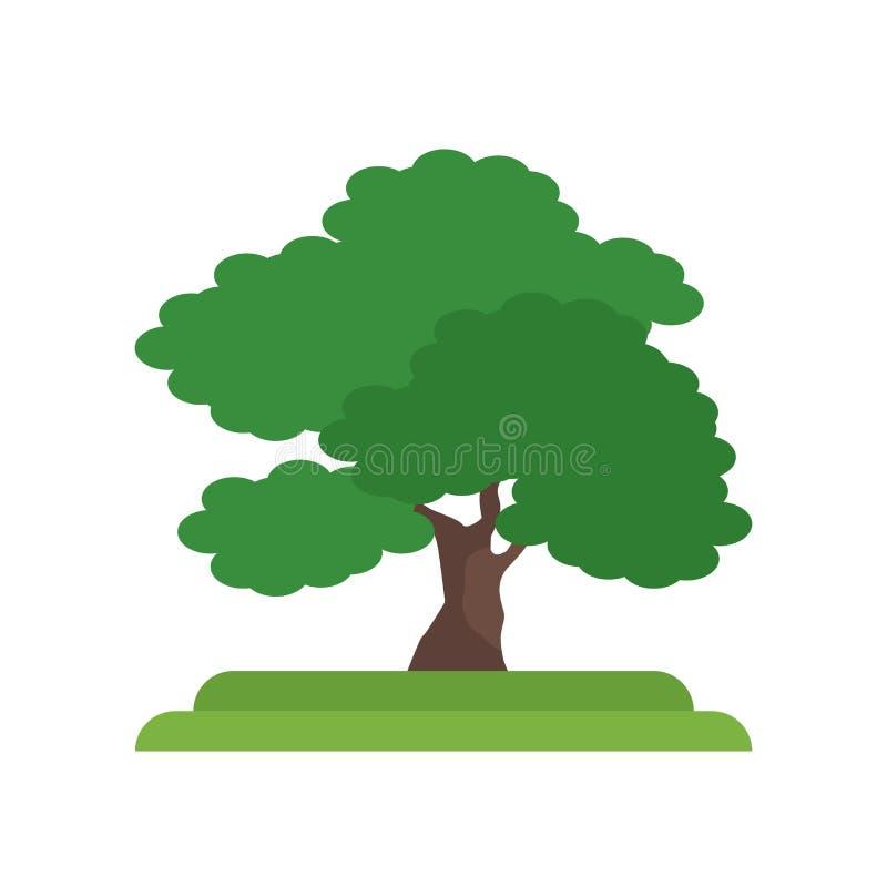 黑核桃木树象在白色和标志隔绝的传染媒介标志 库存例证