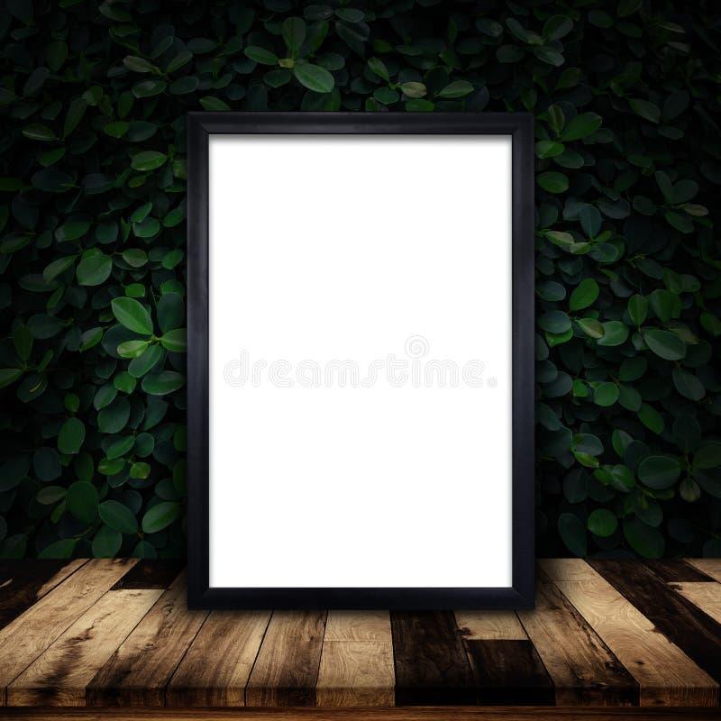 黑框架海报大模型在绿色常春藤墙壁背景的 免版税库存图片