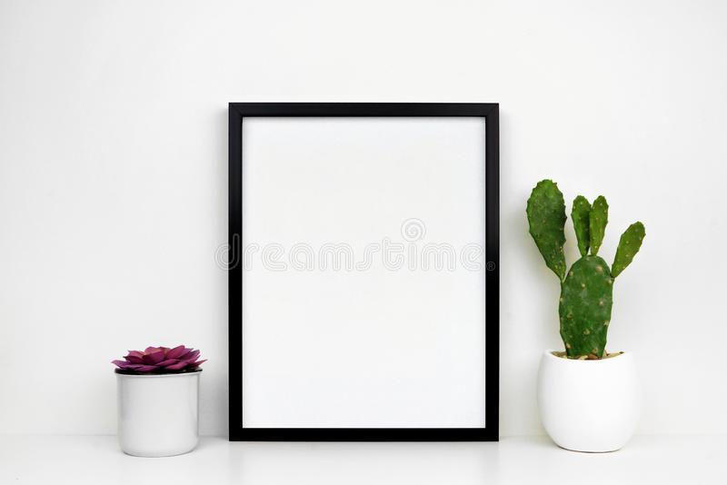 黑框架wiMock的嘲笑与多汁植物和仙人掌植物一个白色架子的或书桌的黑框架对白色墙壁 库存照片