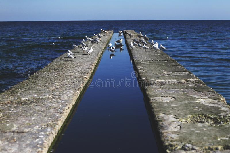 黑海,傲德萨的海边 图库摄影