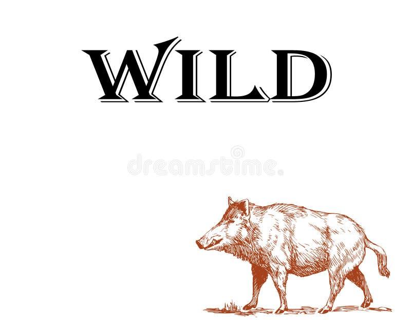 黑白刻记被隔绝的猪例证 库存例证