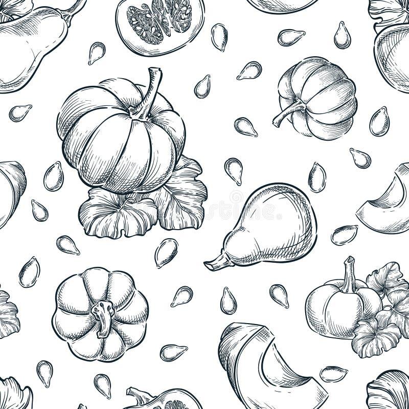黑白南瓜矢量无缝图案 草绘手绘图示 秋瓜收获,种子背景 向量例证