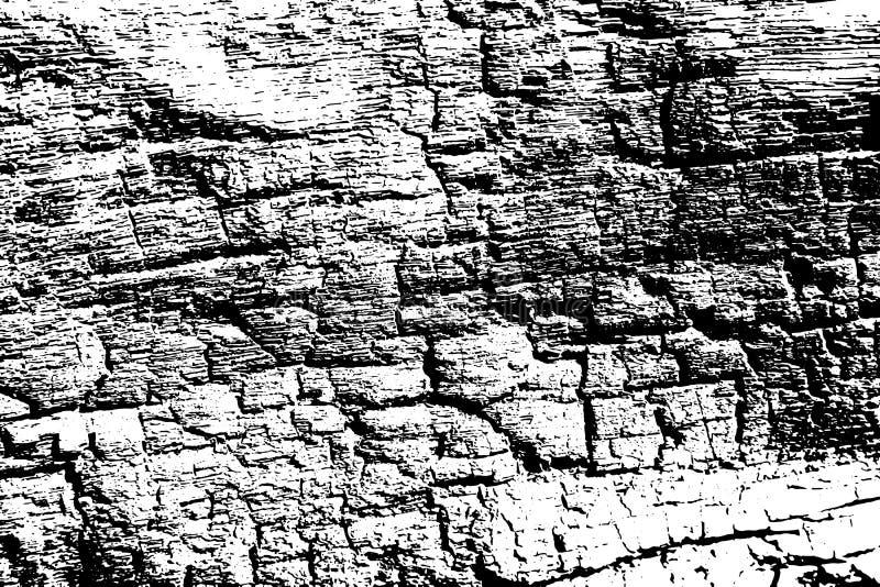 黑白火烧了木纹理 木表面被追踪的背景 被风化的自然纹理 向量例证